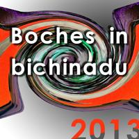 copertina dell'album Boches in bichinadu 2013